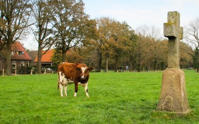 Een kaartviewer voor veldnamen in Overijssel